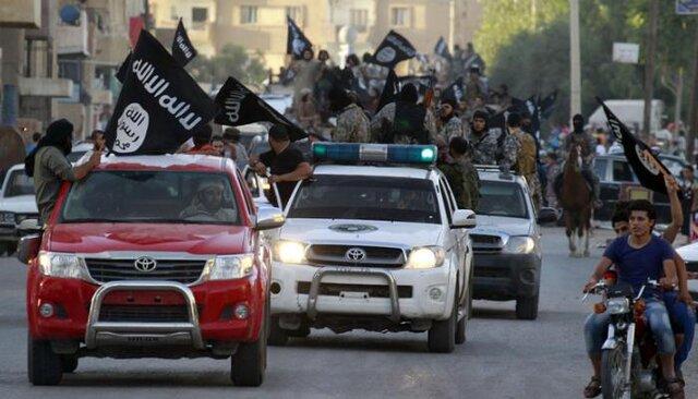 داعشی جدید در راه است  آخرین خبرها