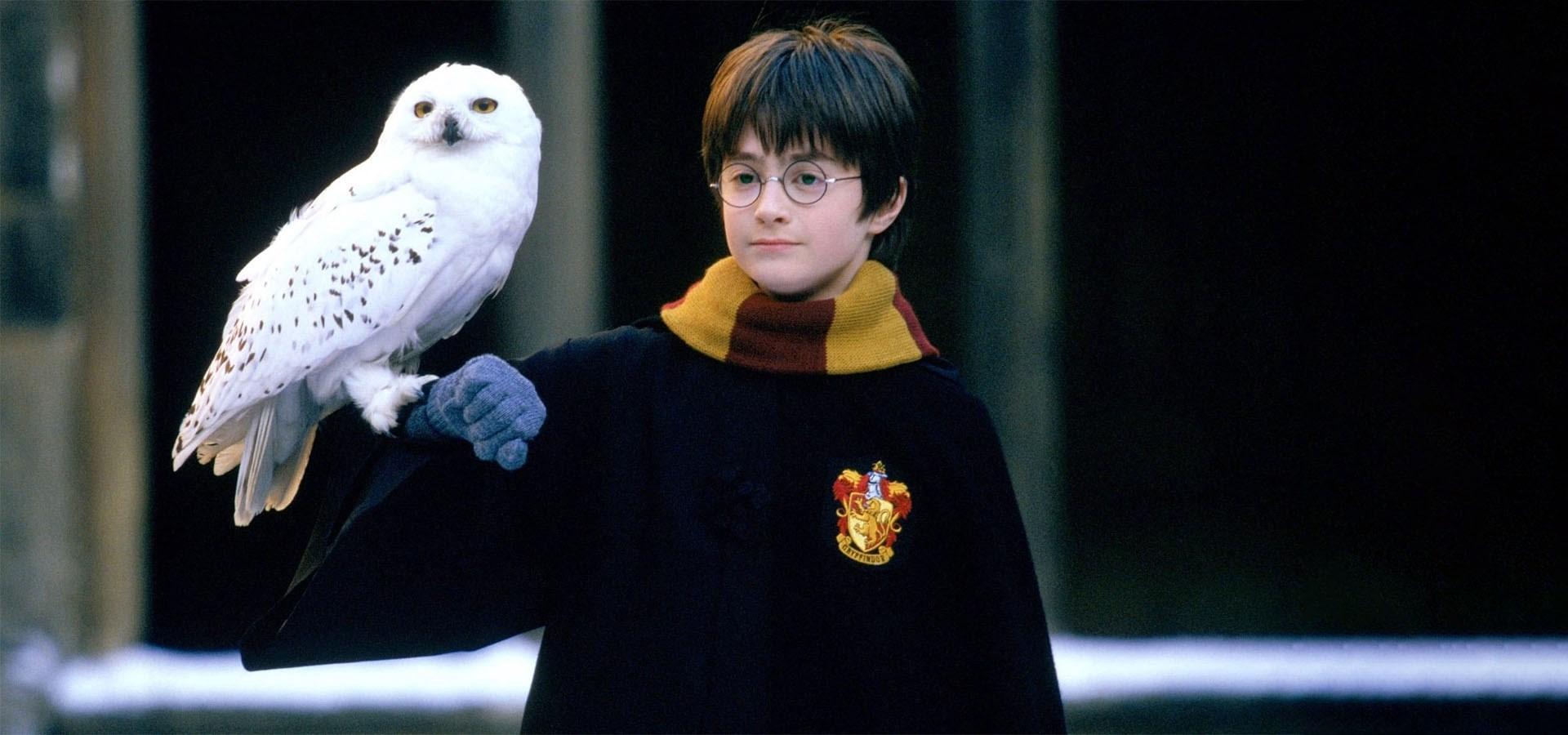 """هری پاتر """"حیوانات عجیب"""" در موزه تاریخ طبیعی لندن  آخرین خبرها"""