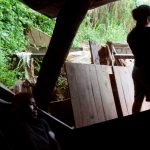 سقوط یک معدن غیرقانونی طلا در نیکاراگوئه حداقل 10 تأخیر به وجود آورد |  نیکاراگوئه
